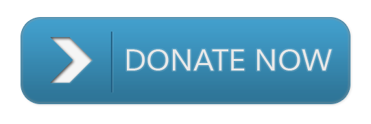 Quick and easy credit card donations